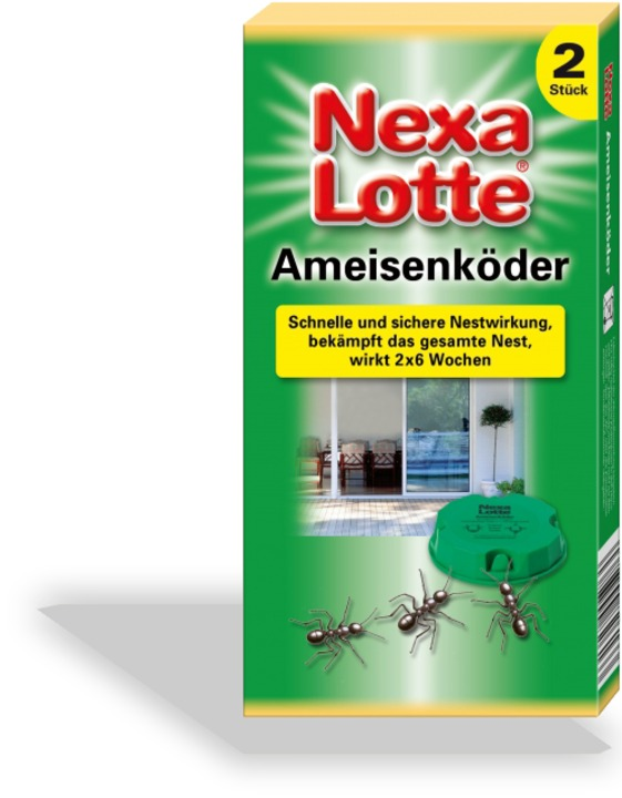 ameisenk der nexa lotte. Black Bedroom Furniture Sets. Home Design Ideas