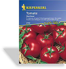 Tomate, Strauchtomate Harzfeuer