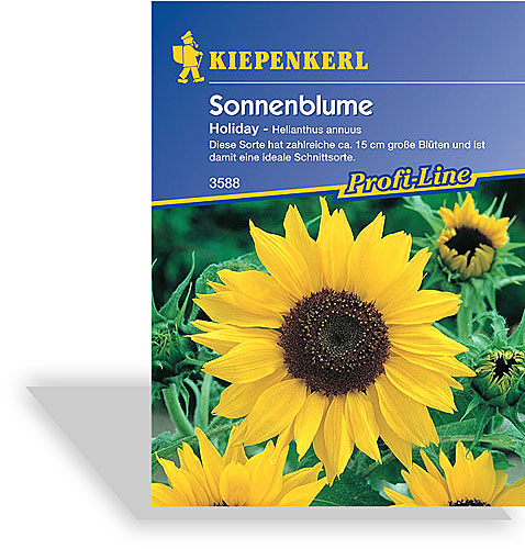 sonnenblume holiday saatgut von kiepenkerl. Black Bedroom Furniture Sets. Home Design Ideas