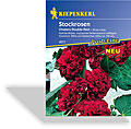 Stockrose Chaters Double Red, Kiepenkerl