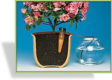 Automatischer wasserspender blumat for Wasserspender fur pflanzen