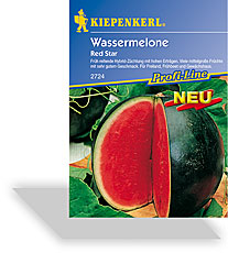 Melone, Wassermelone Red Star