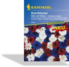 Kornblume Stars and Stripes