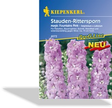 Rittersporn Magic Fountains Pink