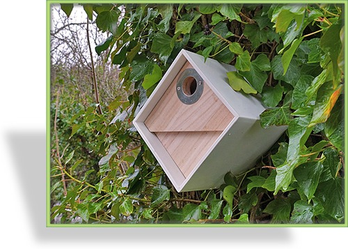 vogelhaus nistkasten wildlife. Black Bedroom Furniture Sets. Home Design Ideas