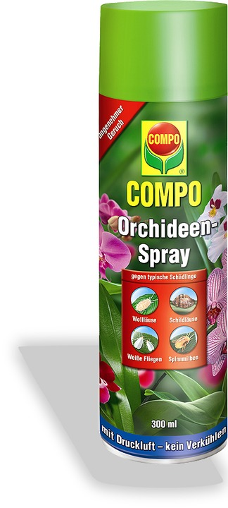 Compo Orchideen Spray